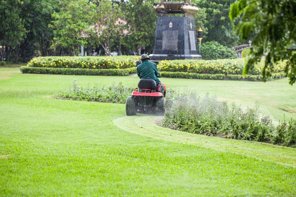 Como mantener tu jardín bonito y bien cuidado ahora que llega el verano